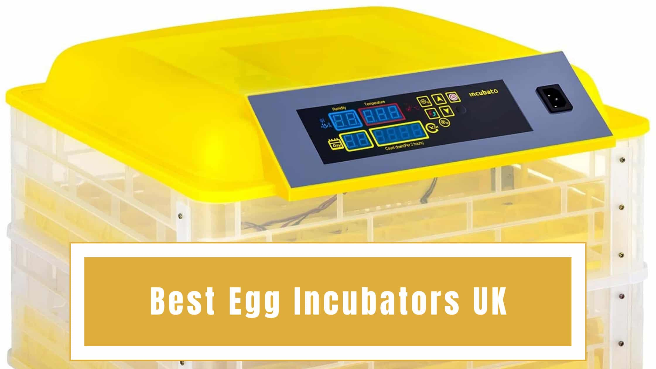 Best‌ ‌Egg‌ ‌Incubators‌ ‌UK