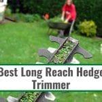 Best Long Reach Hedge Trimmer