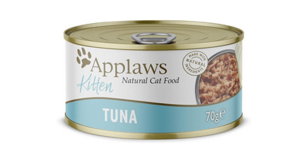 Best Food for Kittens UK